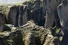 Fjaðrárgljúfur (Feather River Gorge), displaying its craggy volcanic rock slopes clustered with lithophytic vegetation - distal is the Eldhraun (Fire Lava) field.