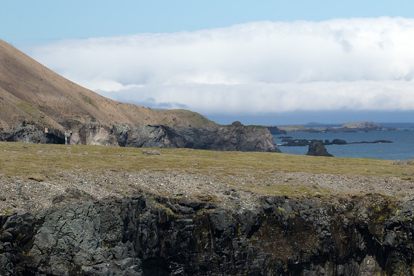 From volcanic rock sea cliffs along the Mælifell (mountain) and Atlantic coastline - distal to Papey (Friar's Island), uninhabited with an area of around .8 mi² (2 km²) and rising to about 190 ft. (58 m).