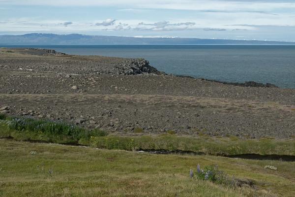 Naustá (river) - amongst the nootka lupine, meadow buttercup, arctic thyme, willow, moss and grass - along the igneous rock shoreline of the Öxarfjörður (fjord) - with beyond the Tjörnes (peninsula) - and distal the Kinnarfjöll and Víknafjöll (mountains).