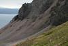 Along the volcanic rock slope below the Heiðarhnjukúr (peak) - where the heathland vegetation blends into the scree - with below the Vopnafjörður (fjord) - beyond is the Miðdegisfjall (mountain) - then distal to the ridges along the Gunnólfsvíkurfjall (mountain).