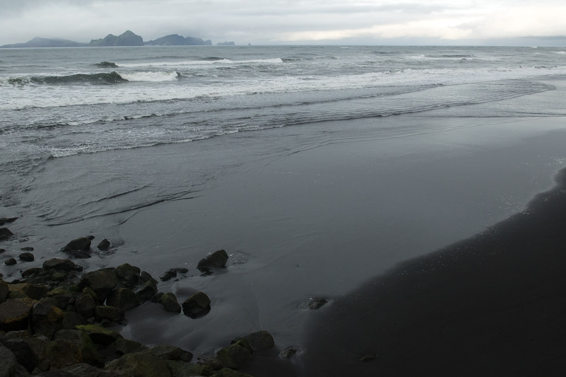 From the black volcanic sand fjara (beach), amongst the halophytic vegetation clustered atop the igneous rocks - out across the Atlantic waves to the volcanically active archipelago of the Vestmannaeyja (Westmann Islands).