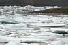 Fjallssárlón (Mountain Lagoon) - displaying the glacial ice amongst the eastern peninsula.