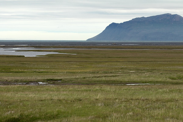 Across the Blautamýri (marshland), and the Jökulsá Brú (river) - to the massive log-pile along the Lagarfljót (river) - then the Heradhssandur (sand area) along the shoreline of the Héraðsflói (bay) - with distal the Ösfjöll (mountain), which forms the southern boundary of the bay - which is just north of the northernmost area of the East Fjords of Iceland.
