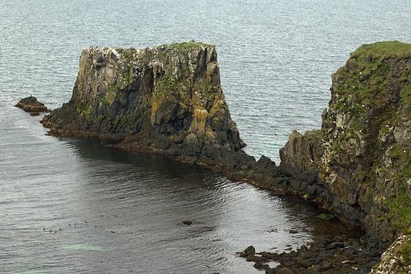 Volcanic rock shoreline along the Stapavík (inlet) - adjacent the Bakkaflói (bay) - Easten region of Iceland.
