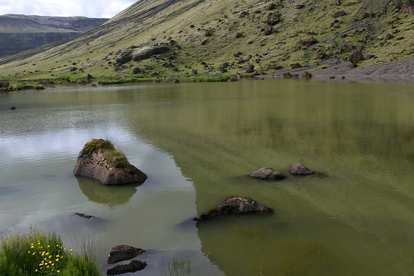 Lómatjörn - a small lake situated along the base of mount Lómagnúpur (peak) - here with meadow buttercups, field horsetail, and sedge amongst the extrusive volcanic rocks and mountain shadow upon the water - Southern region of Iceland.