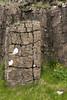 Jointed columnar basalt rock prism, weather eroded and clustered with lichens - Dverghamrar (Dwarf Rocks).
