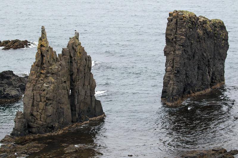 Eroded  sea stacks upon the Vopnafjörður (fjord), during ebb tide.