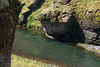 Fjaðrárgljúfur (gorge) - with the Fjaðrá (river) flowing amongst the volcanic rock and lithophytic vegetation - Katla UNESCO Global Geopark.