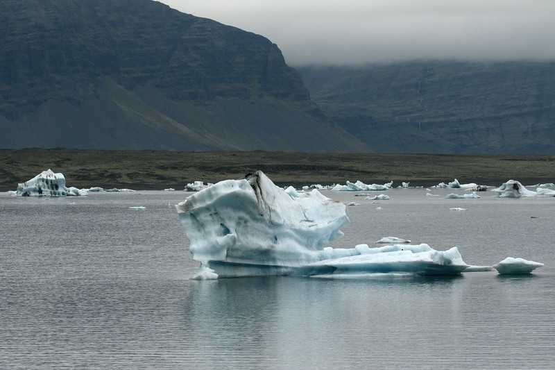 Icebergs, bergy bits, and growlers afloat the brackish water of the Jökulsárlón (lagoon) - with beyond the lateral moraine to the volcanic rock slope of the Fellsfjall (mountain), and distal amongst the clouds, the foss (falls) cascading down the slope of the Þverárfjall (mountain).