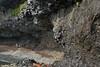 Páskahellir (Easter Cave) - below the sea cliff along the Tvífjall (mountain) above - and adjacent the Norðfjarðarflói (bay).