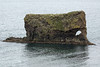 Volcanic rock sea stack/arch, cloaked mostly with moss and lichen - here upon the Vopnafjörður (fjord) - Eastern region of Iceland.