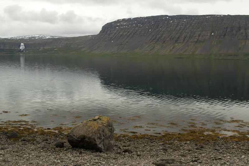 From the lichen encrusted igneous rock boulder among the kelp - across the placid water in the Borgarfjörður (fjord), to the Urðarfell (mountain) with scattered snow patches -  and distal the Dynjandi Falls - Westfjords region of Iceland.