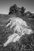 Djupalonssandur beach lava formations