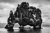 Hvitserkur lava rock, Hunafjordur