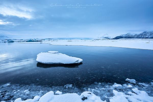 Icy Wonderland
