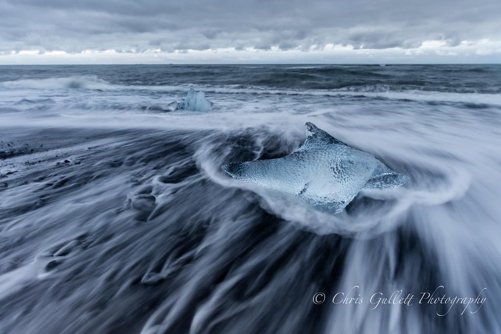 Dolphin Ice Sculpture