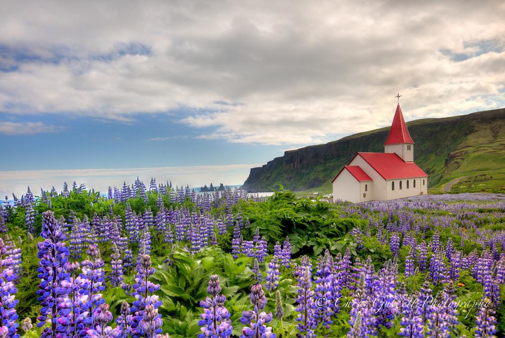 The White Church