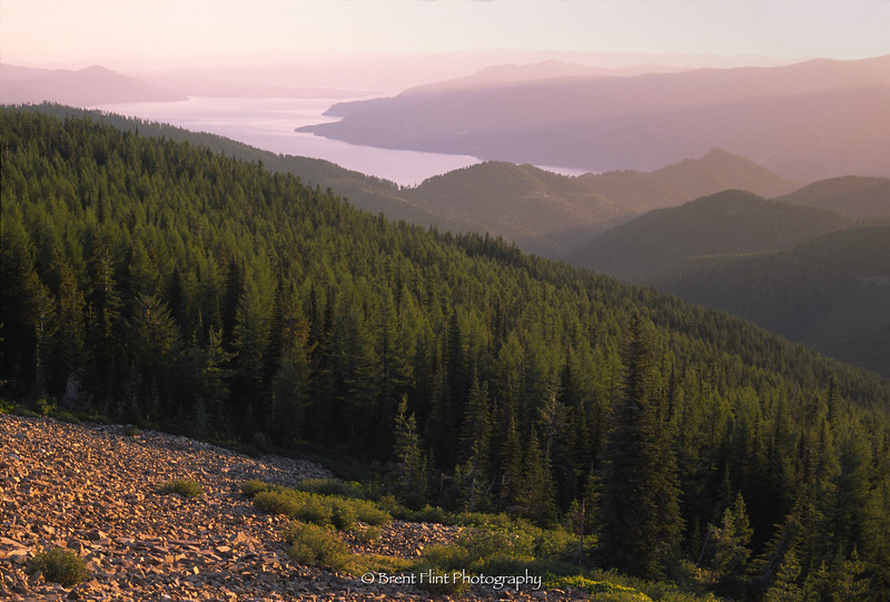S.4475 - Lake Pend Oreille & forest at sunrise, from North Chilco Peak, Coeur d'Alene National Forest, ID.