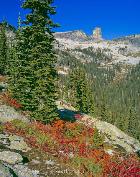S.4903 - Chimney Rock and fall color, Kaniksu National Forest, ID.
