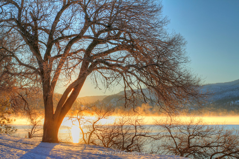 DF.3457 - sunrise through fog, Lake Coeur d'Alene, Kootenai County, ID.