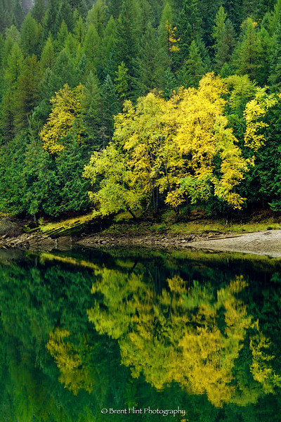 S.4095 - Autumn reflections on the Clark Fork River, Kaniksu National Forest, ID.