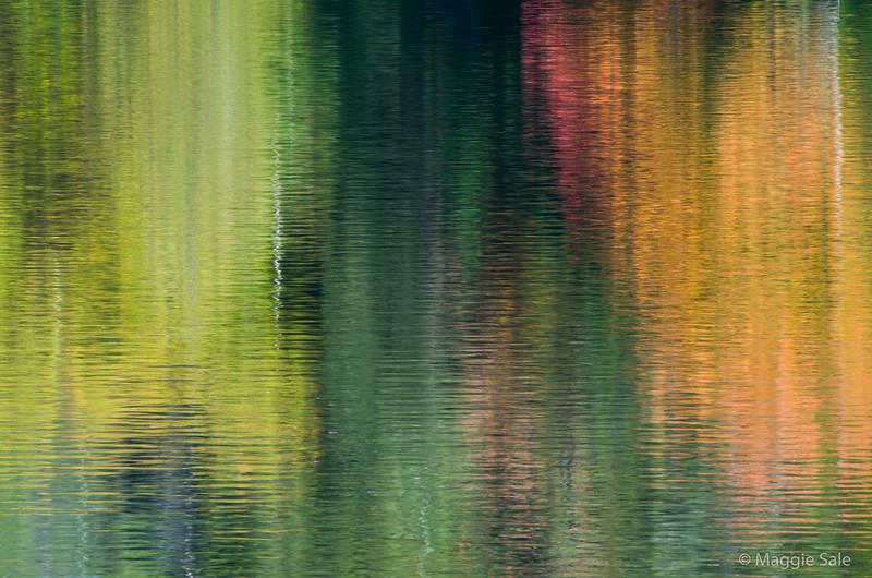 Algonquin Park fall reflection