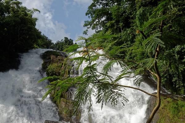Chalakkudy River, Kerala, India
