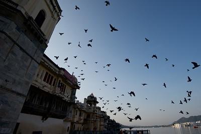 India  994
