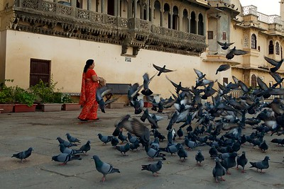 India  995