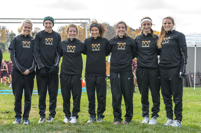 Westfield earned the final spot and a trip to the State Finals at the IHSAA Girls Cross Country Carmel Semi-State at Northview Christian Church in Carmel, Indiana on Saturday, October 20, 2012. Westfield won in a tiebreaker with Center Grove using their 6th place runner to advance.