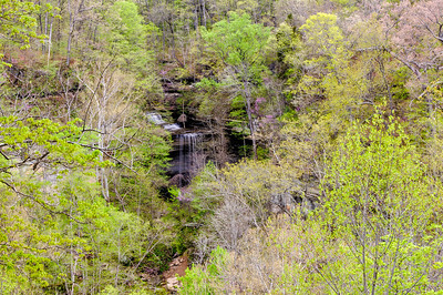 Big Clifty Falls within the Trees