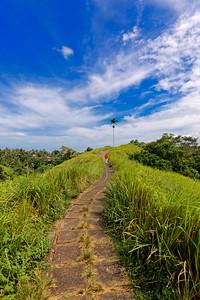 Ubud Ridge Path, Bali, Indonesia (2)