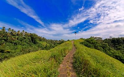 Ubud Ridge Path, Bali, Indonesia (3)