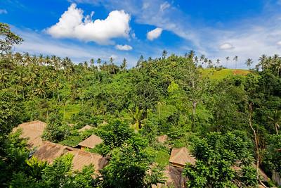 Resort Roofs, Ubud, Bali