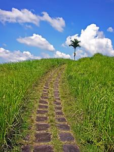 Ridge Walk, Ubud