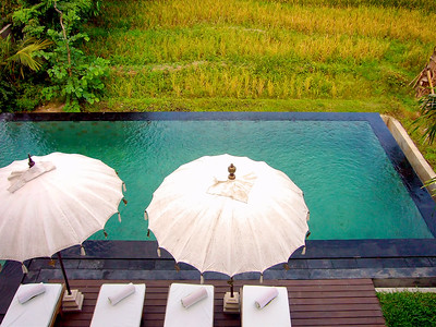 Pool in the Rice Field