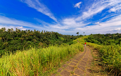 Ubud Ridge Path, Bali, Indonesia (1)
