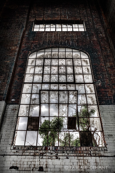 Haunted window