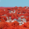 Colonial New England Town with Trees in Boston Suburbs and Kodak Aerochrome Infrared