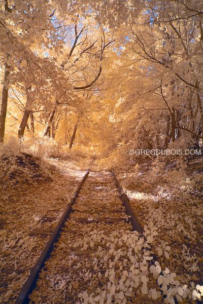 Old Abandoned Railroad Train Tracks in Eastern Massachusetts