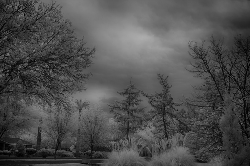 B&W converted IR shot with Clouds - IR 40D with 720nm IR filter installed. - Shot within 5 minutes of 30D B&W conversion