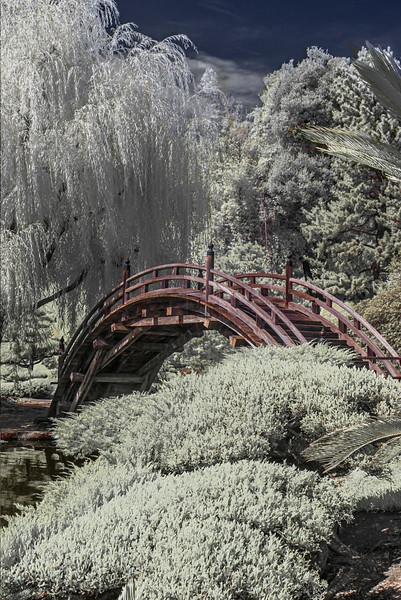 Bridge in the Japnese Garden