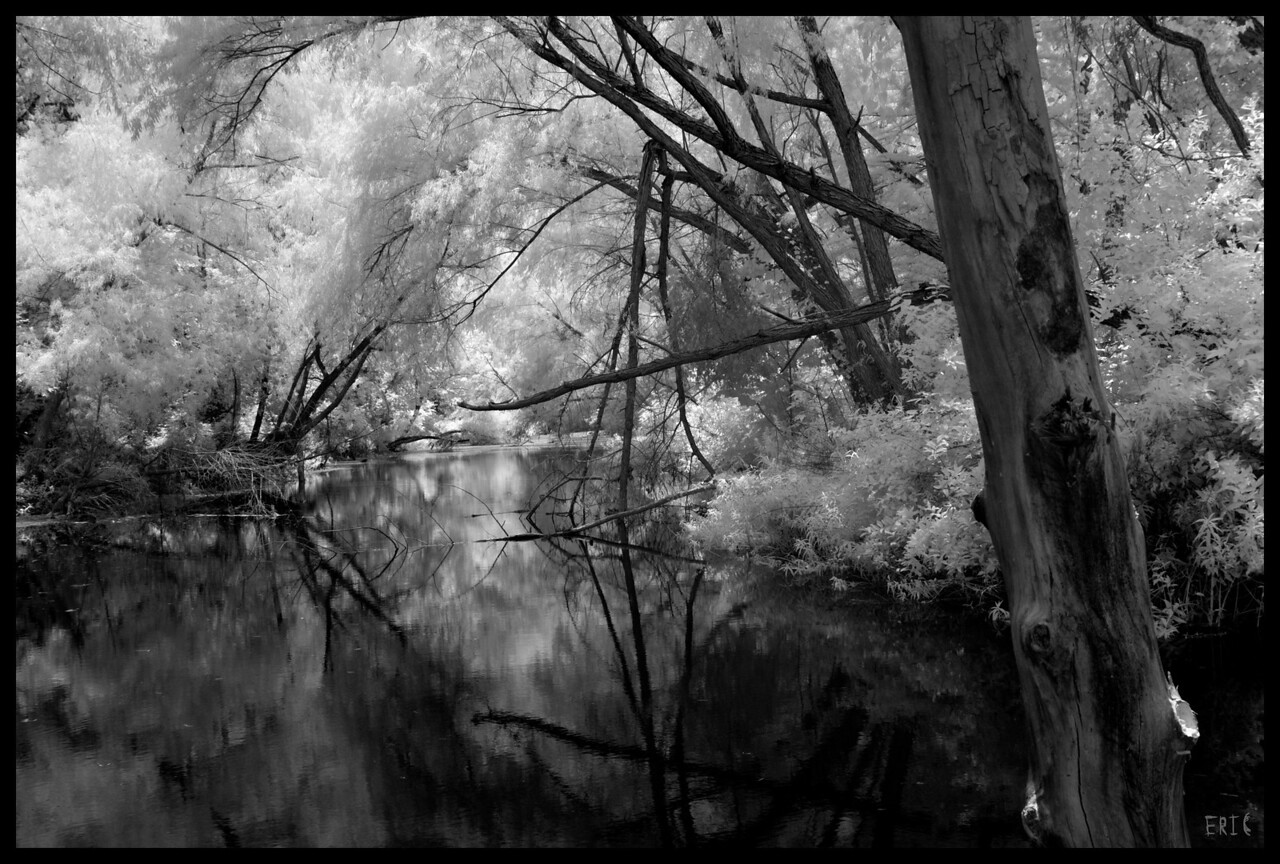 Reflections in Contrast<br /> <br /> Date:June 27, 2012<br /> <br /> Camera: Full Spectrum converted Canon 40D<br /> Lens: Canon EF24-70 f2.8L<br /> Filter:Astronomik Proplanet 742 Clip-in<br /> Tripod: N/A<br /> Exposure: ISO 100, f11<br /> <br /> Spicewood Springs, Austin Texas