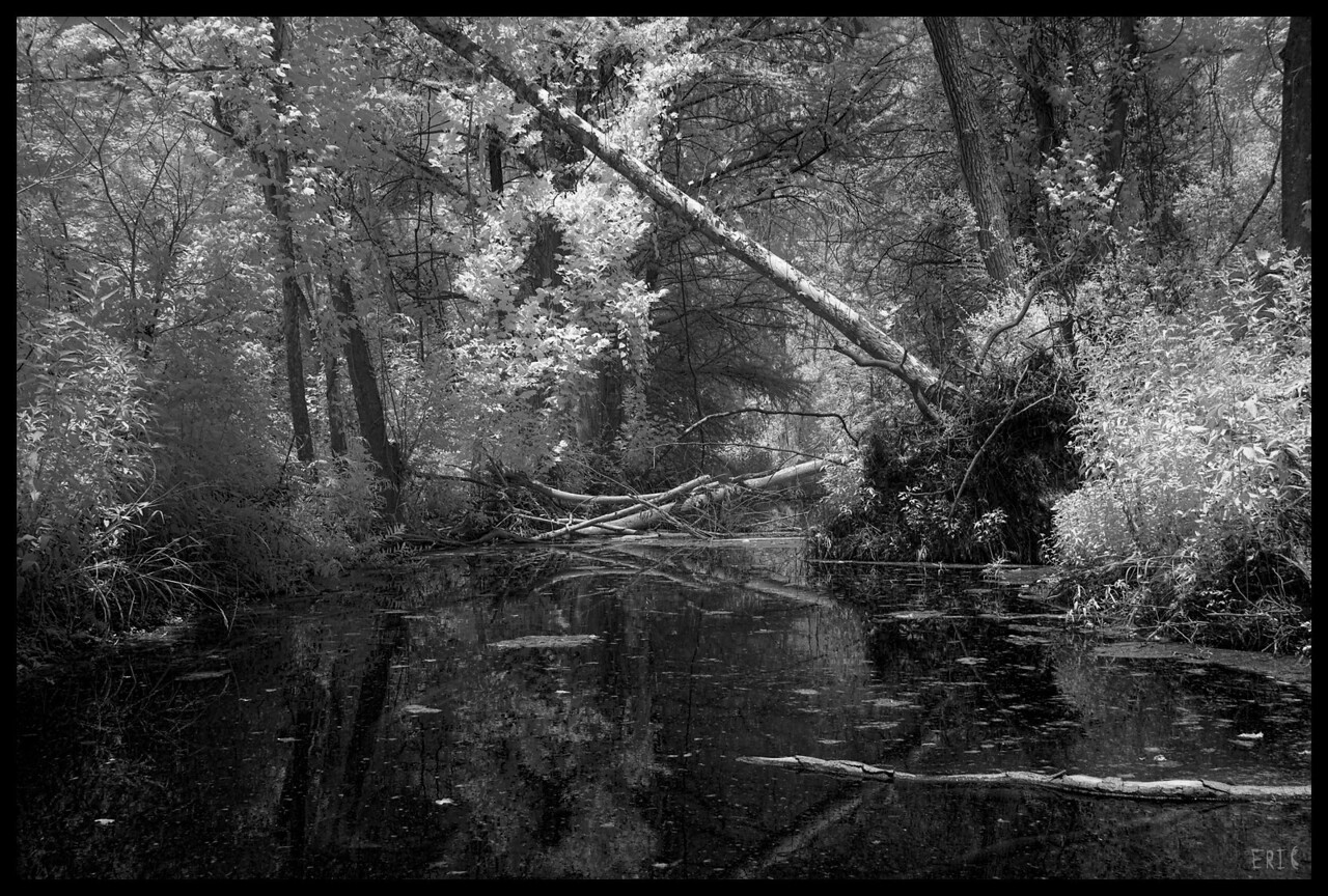 Jungles of Austin<br /> <br /> Date:June 27, 2012<br /> <br /> Camera: Full Spectrum converted Canon 40D<br /> Lens: Canon EF24-70 f2.8L<br /> Filter:Astronomik Proplanet 742 Clip-in<br /> Tripod: N/A<br /> Exposure: ISO 100, f11<br /> <br /> Lakewood Springs, Austin Texas