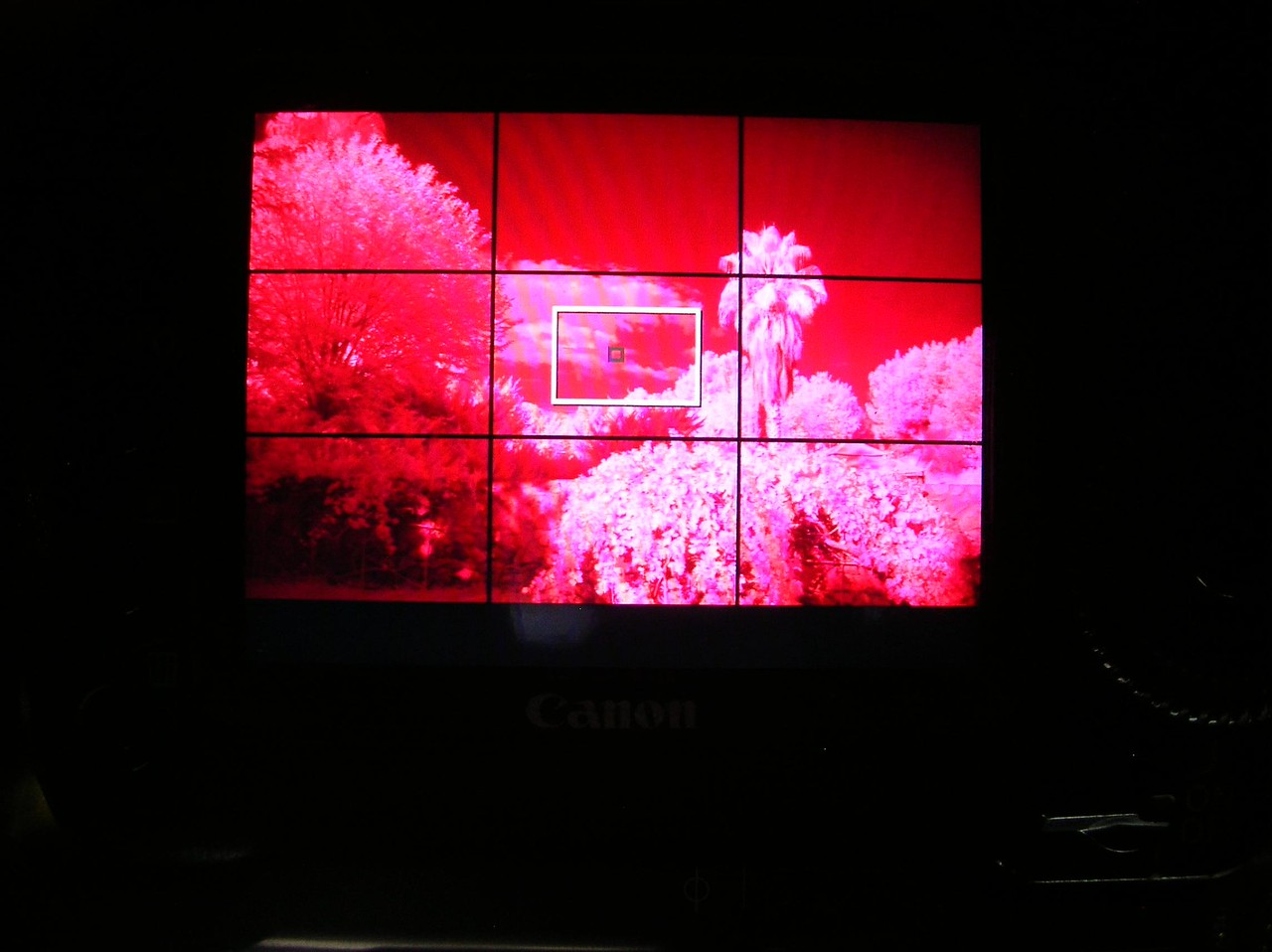 Camera LCD with a Daylight White Balance & 740nm