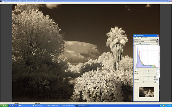 Custom White Balance on 740nm IR filter
