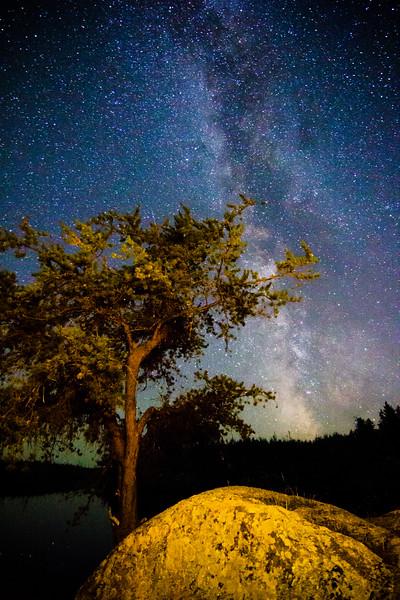 Milky Way Seagull Lake
