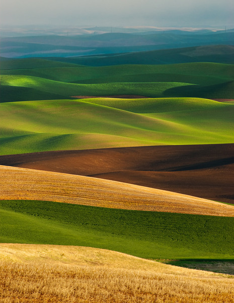 Palouse Layers