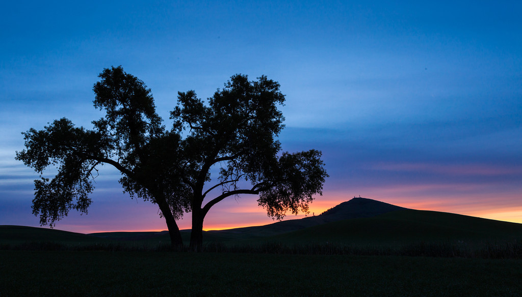 Steptoe Butte Dawn