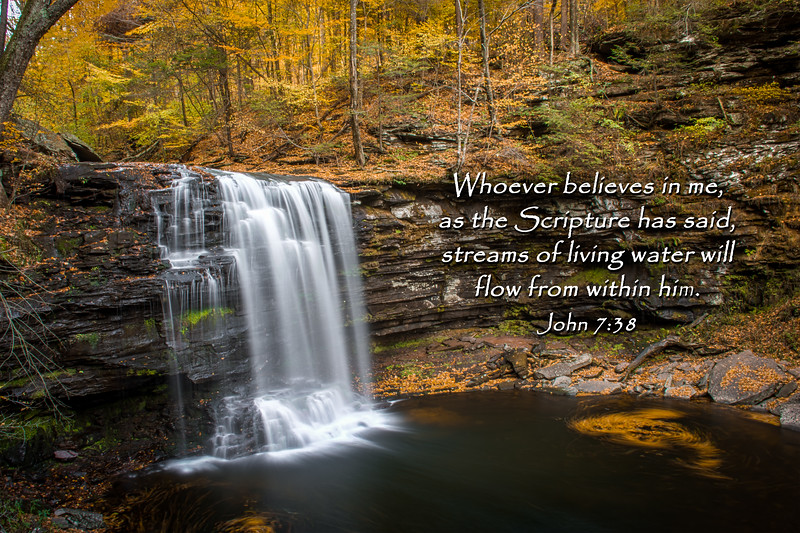 Whoever believes in me, as Scripture has said, rivers of living water will flow from within him ~ John 7:38<br /> <br /> Photo taken at Ricketts Glen State Park.